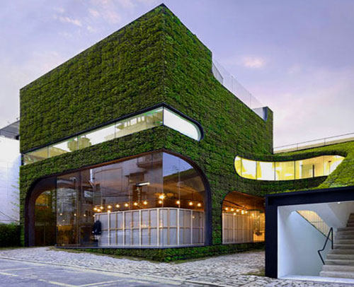 Building Covered in Grass
