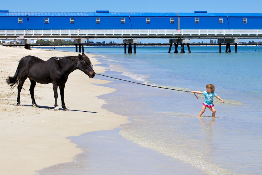 girl-pulling-a-horse-into-water-small