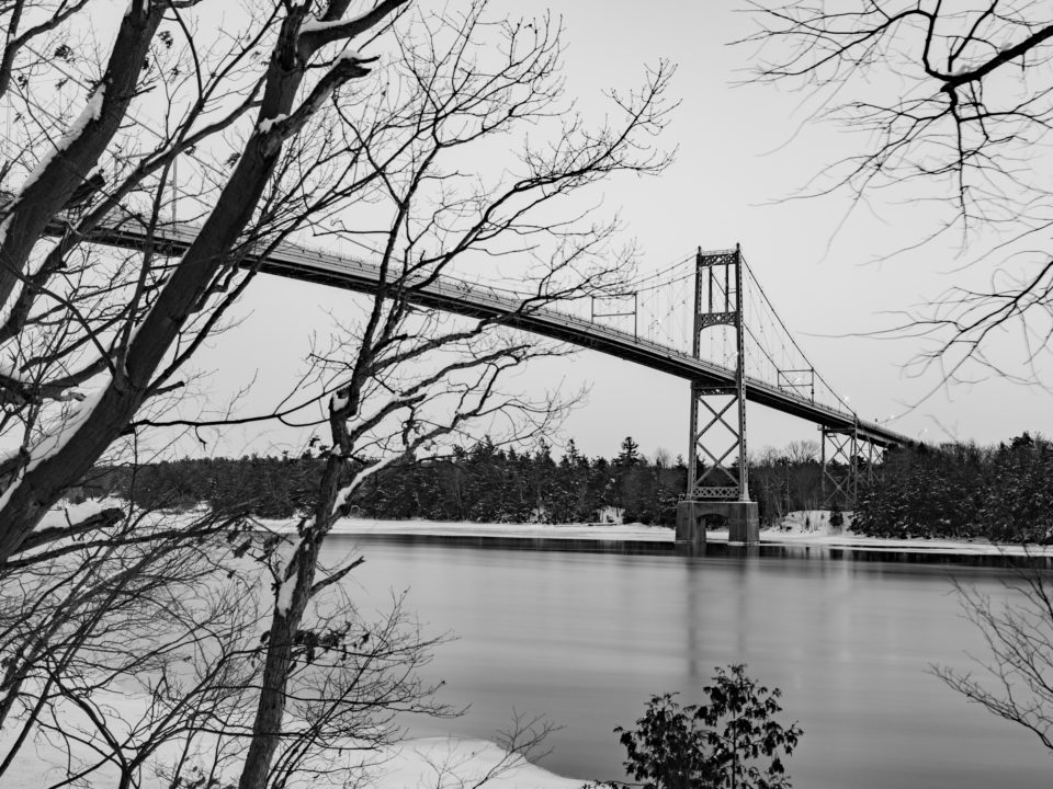 1000 Islands Bridge And Trees In Winter