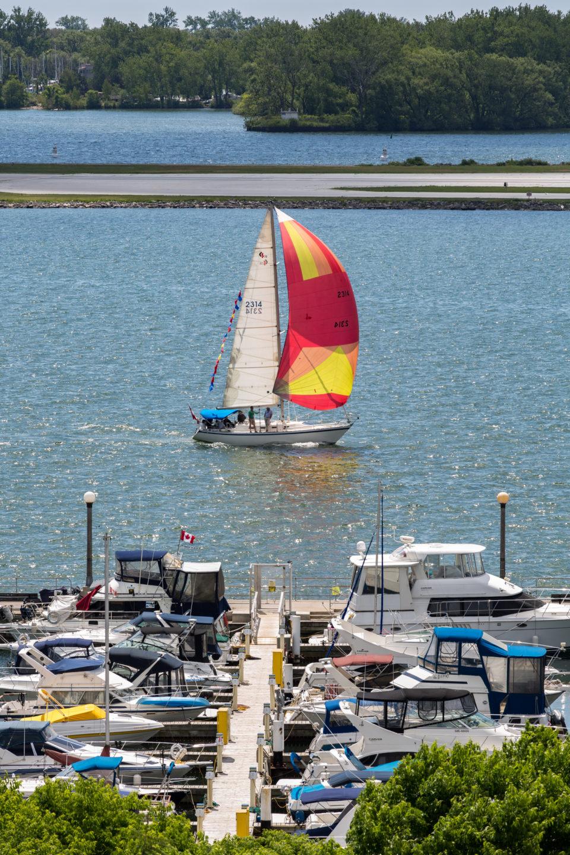 Sailing Inner Harbour Toronto