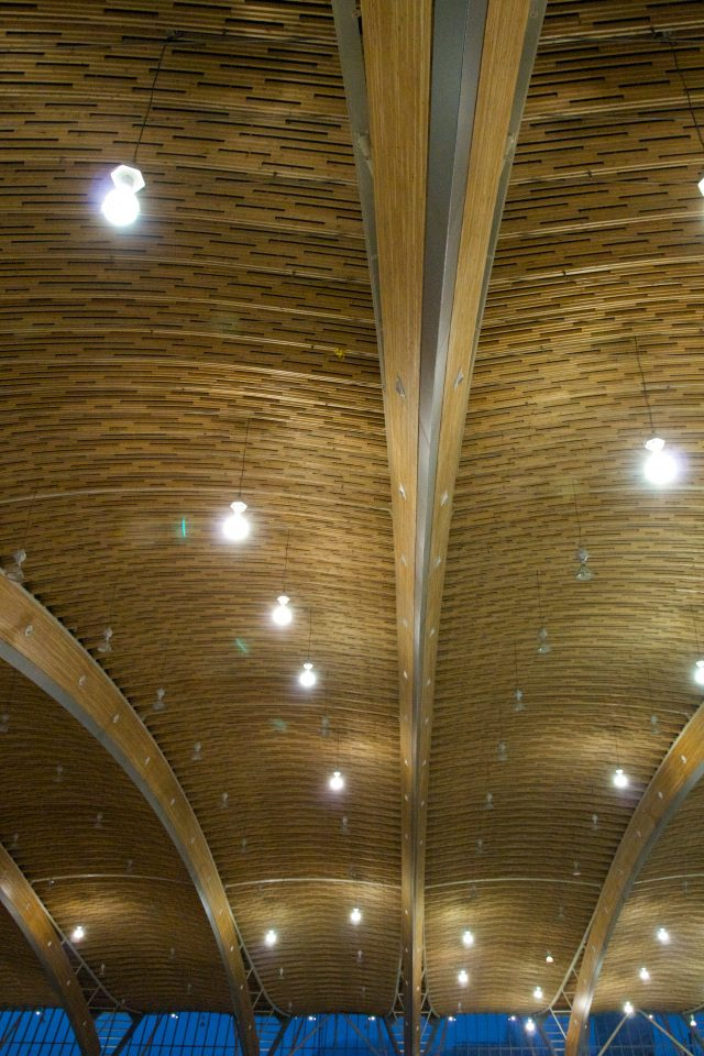 Richmond Oval Ceiling
