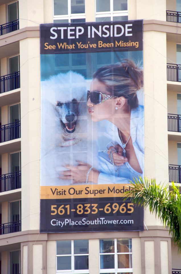 Demographic in Palm Beach