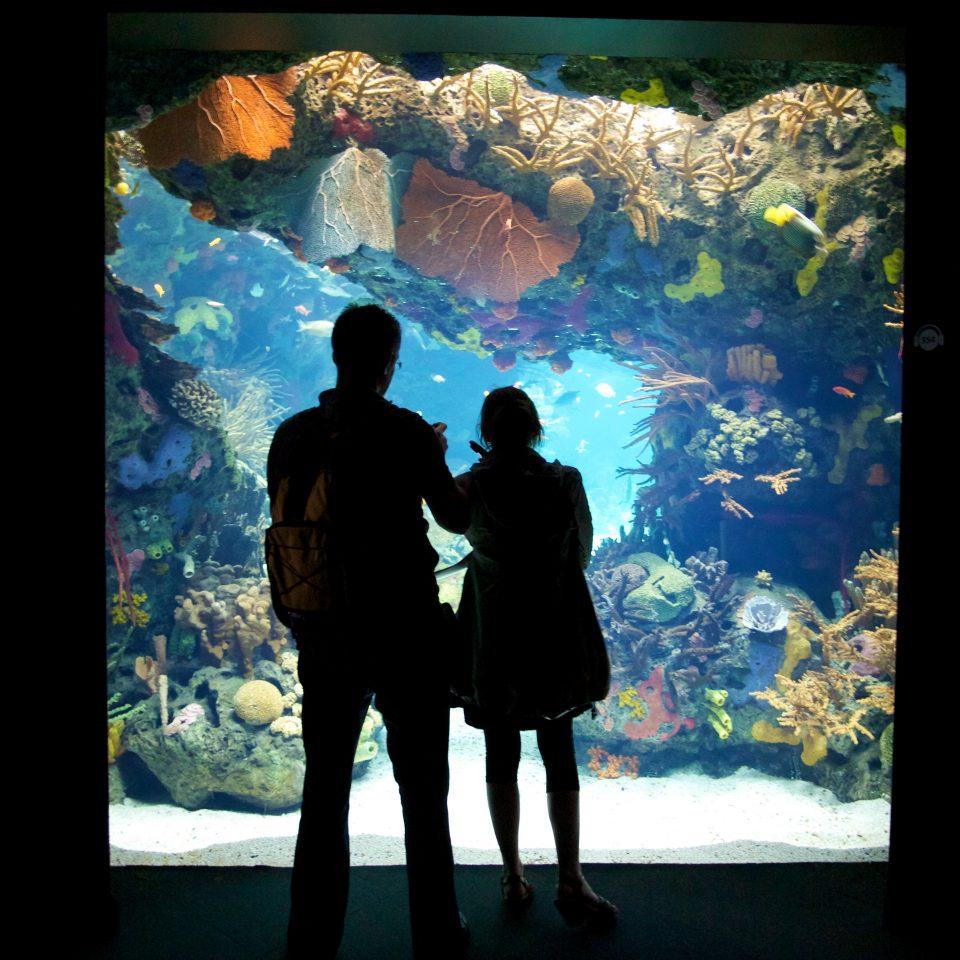 Lisbon Aquarium