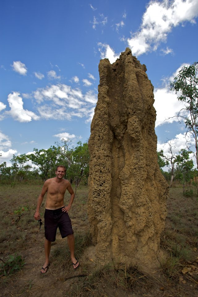 me and a termite mound