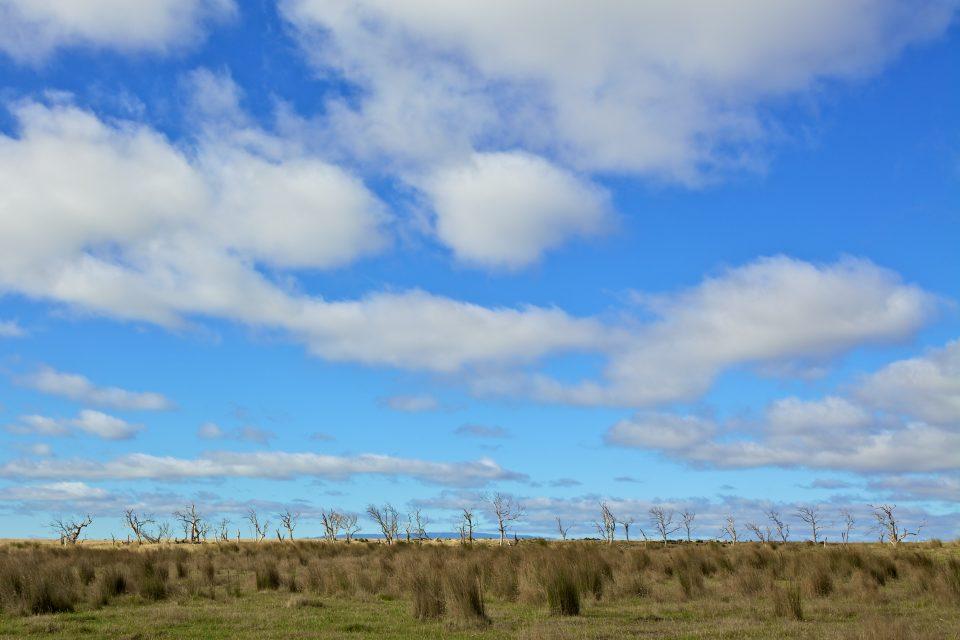 Landscape, Tasmania Australia