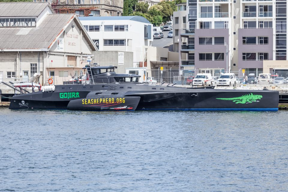 Sea Shepherd Gojira in Port