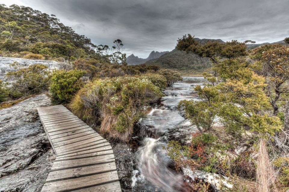 Stream Cradle Mountain Tasmania