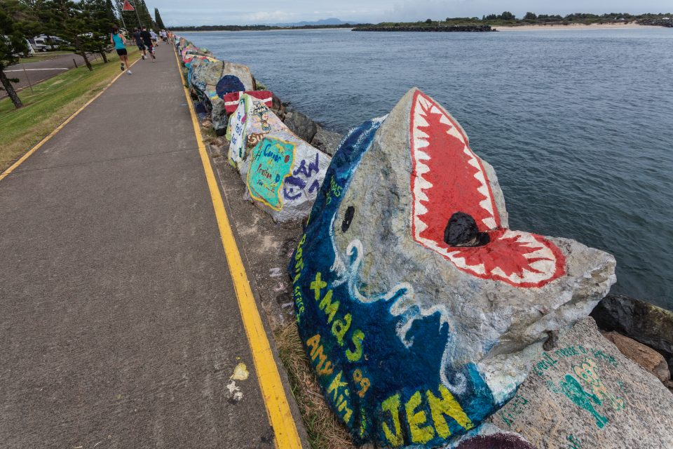 Shark Rock Art Port Macquarie