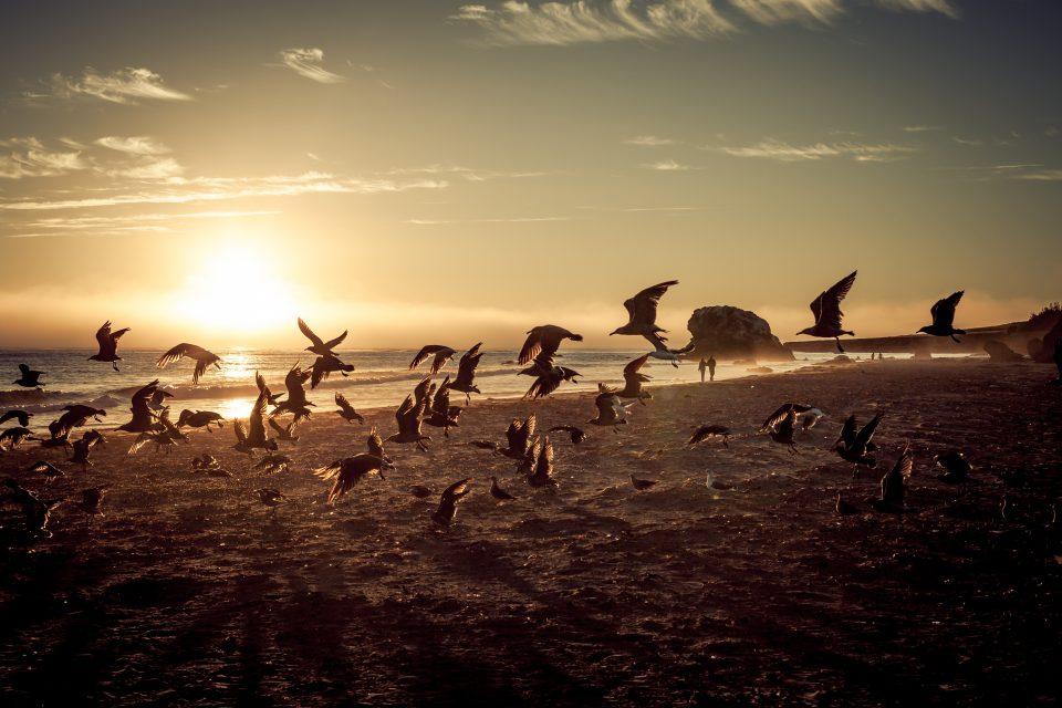 Sunset At San Simeon State Beach